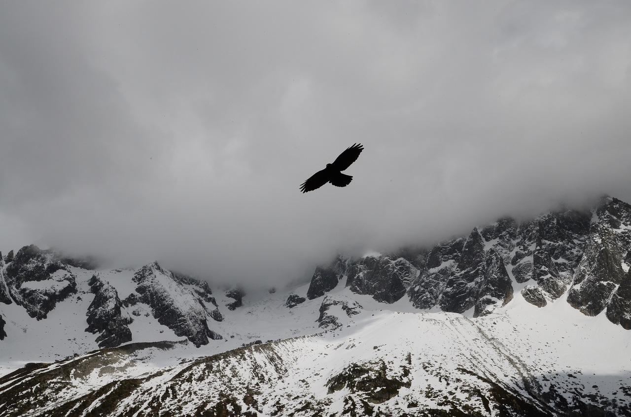 Il Volo dell'Aquila - Leggenda Indiana