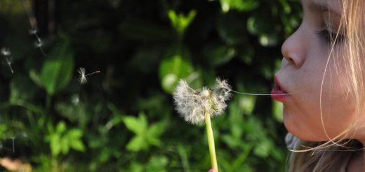 la preziosità della vita - henri nouwen